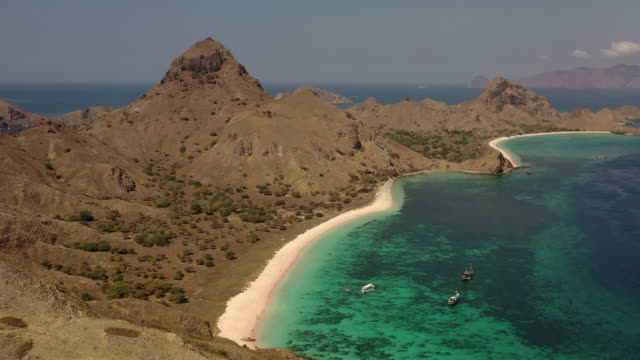 aerial view pale pink sandy beach with clear waters & reef teeming with tropical fish & some strong currents, called pink beach or long island located in komodo national park, east nusa tenggara, indonesia - フロレス点の映像素材/bロール