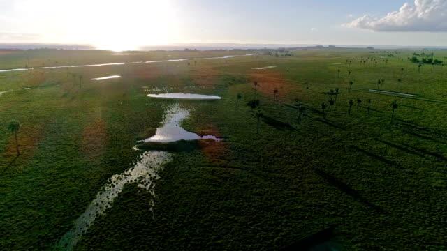 aerial view, paragliding near valizas creek and castillos lagoon, rocha department, uruguay - sedative stock videos & royalty-free footage