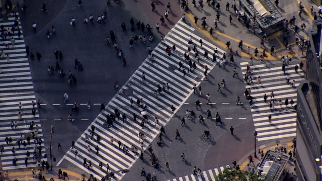 aerial view people shibuya scramble crossing intersection tokyo - social issues点の映像素材/bロール