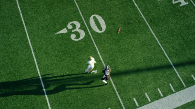 WS Aerial view Professional football wide receiver running down sideline and catching pass