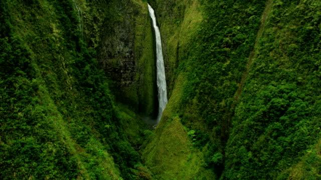 aerial view rainforest remote hidden valley jurassic coast - jurassic stock videos & royalty-free footage