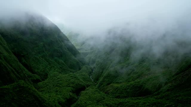 vídeos de stock e filmes b-roll de aerial view rainforest valley lush vegetation maui usa - povo polinésio