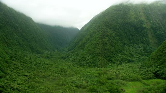 aerial view rainforests cliffs waterfalls big island hawaii - jurassic stock videos & royalty-free footage