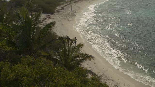 aerial view revealing distant couple running on ocean beach / petit tabac, tobago cays, st. vincent and the grenadines - badbyxor bildbanksvideor och videomaterial från bakom kulisserna