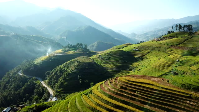 aerial view rice field terraces panoramic hillside with rice farming on mountains - north stock videos & royalty-free footage