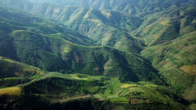 aerial view rice terrace fields  in northwest vietnam, harvest season rice paddy fields at mu cang chai, yen bai province, vietnam - vietnam stock videos & royalty-free footage