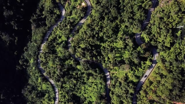 aerial view road in the forest - thoroughfare stock videos & royalty-free footage