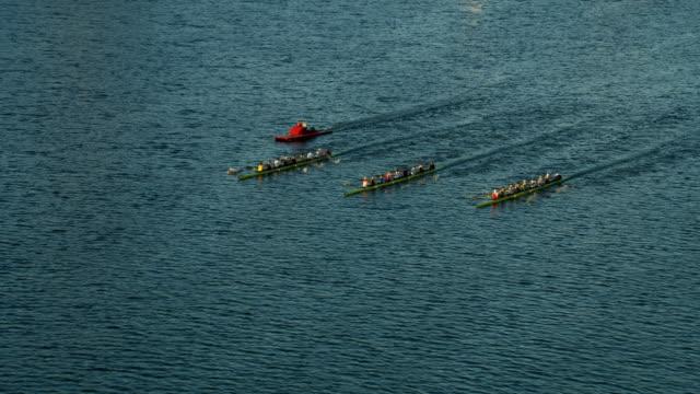 aerial view rowing crews racing charles river boston - regatta stock-videos und b-roll-filmmaterial