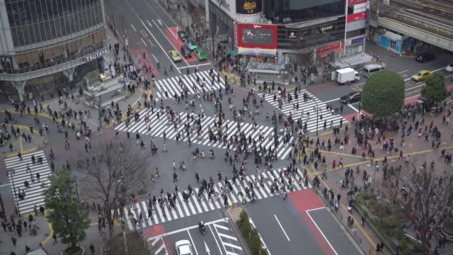 ws aerial view shibuya crossing at ngith - shibuya crossing stock videos & royalty-free footage