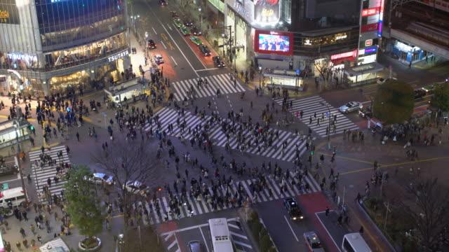 vídeos y material grabado en eventos de stock de ws tl aerial view shibuya crossing at night - cruzar