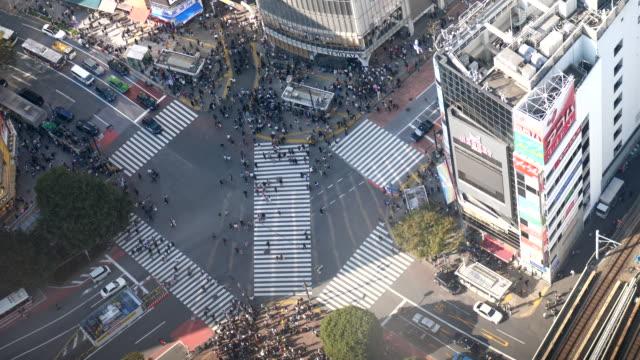 aerial view shibuya crossing in tokyo - crossroad stock videos & royalty-free footage