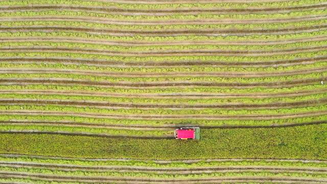 vídeos y material grabado en eventos de stock de aerial view shot agricultural machinery of rice fields. - monocultivo