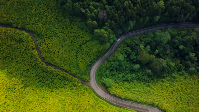 aerial view shot beautiful road on the mountain in mae hong son, thailand - curve stock videos and b-roll footage