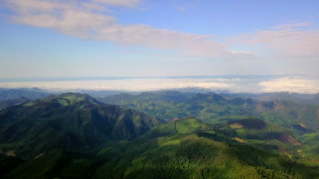 Aerial view shot in the morning with sea fog over mountain at countryside in north Thailand