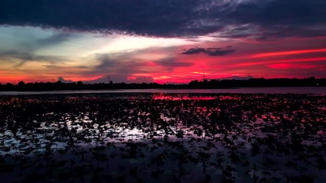 vídeos de stock e filmes b-roll de aerial view shot of beautiful sunset over the lake - reflection