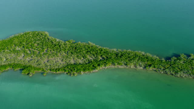 stockvideo's en b-roll-footage met aerial view southern caribbean sub tropical island usa - the florida keys