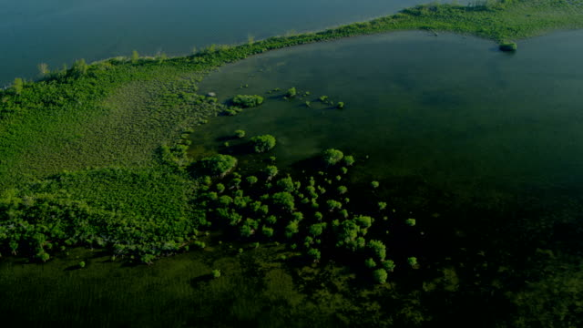 stockvideo's en b-roll-footage met aerial view southern florida national park tropical wetlands - the florida keys