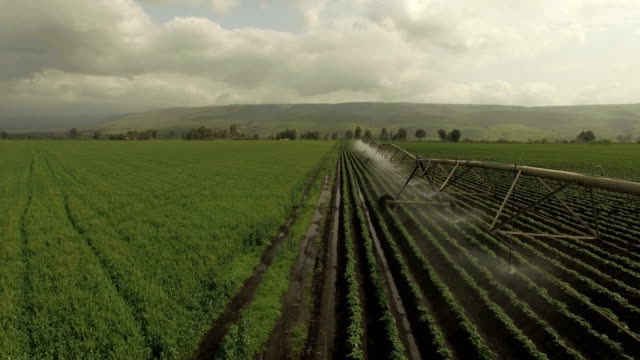 aerial view- sprinklers water agricultural field - irrigation equipment stock videos and b-roll footage