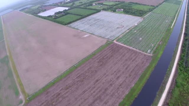 aerial view taken from a cessna 172 of farmland around the city of homestead in the florida everglades - scott mcpartland bildbanksvideor och videomaterial från bakom kulisserna