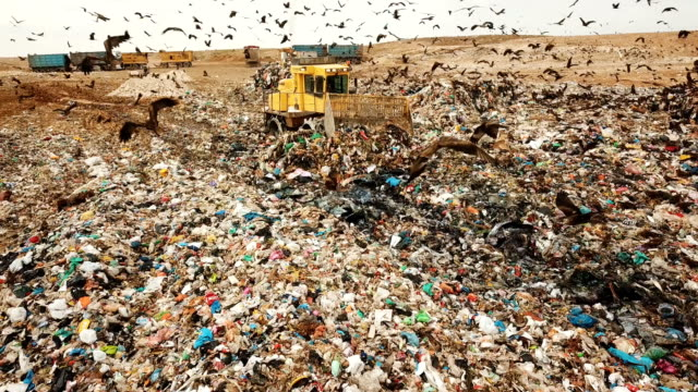 stockvideo's en b-roll-footage met aerial view - thousands of black kites (milvus migrans) foraging on a huge rubbish dump while heavy vehicles and garbage trucks bring more garbage/ duda'im rubbish dump, southern israel - environmental issues