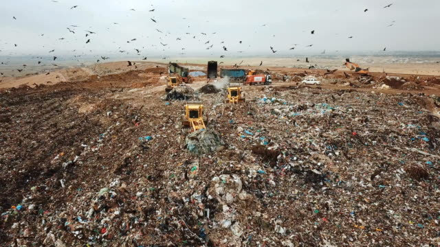 vídeos de stock e filmes b-roll de aerial view - thousands of black kites (milvus migrans) foraging on a huge rubbish dump while heavy vehicles and garbage trucks bring more garbage/ duda'im rubbish dump, southern israel - lixo