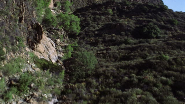aerial view through a narrow canyon - shrubland stock videos & royalty-free footage