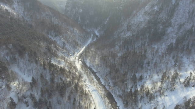 aerial view through the wintry forest - helicopter point of view stock videos & royalty-free footage