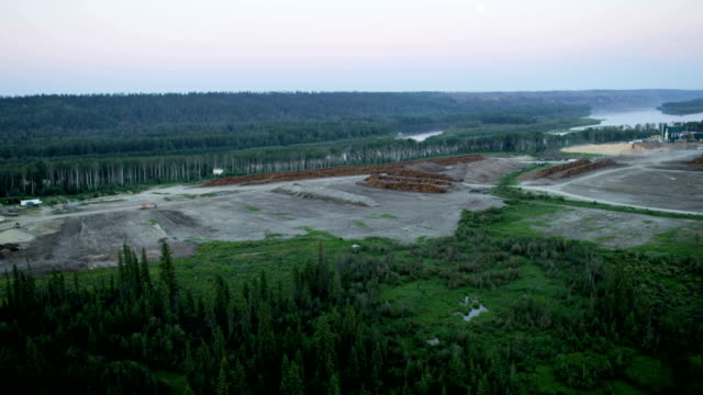 aerial view timber logging site alberta canada - alberta stock videos & royalty-free footage