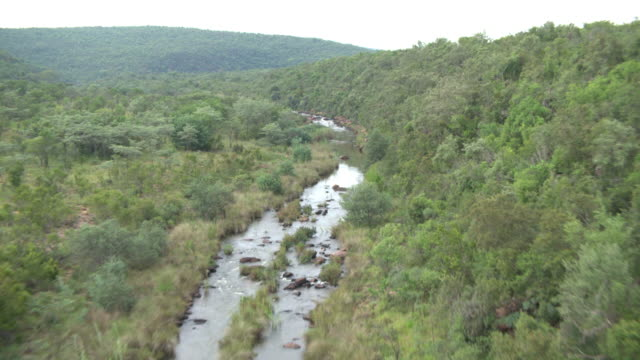 aerial view tracking river with people in south africa - wildlife reserve stock videos & royalty-free footage