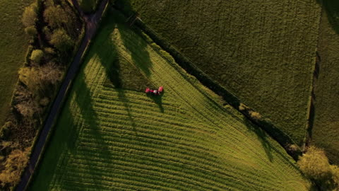 vidéos et rushes de aerial view tractor finishing mowing field - champ