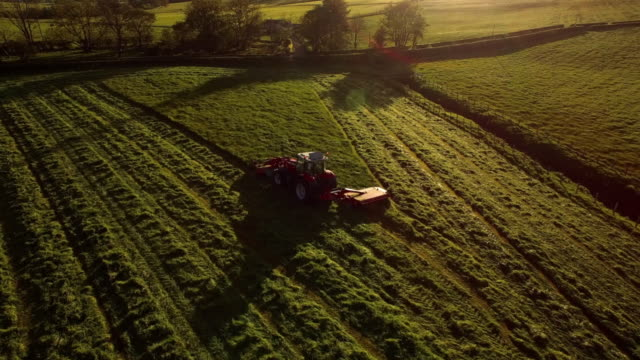 aerial view tractor mowing field at sunset - tractor stock videos & royalty-free footage