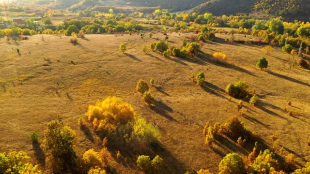 stockvideo's en b-roll-footage met ws aerial view rustige, idyllische rolling herfst landschap stockvideo - softfocus