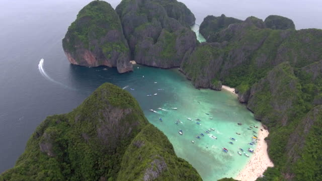 aerial view tropical beach - tropical tree stock videos & royalty-free footage