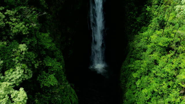 aerial view tropical valley waterfalls maui hawaii - hawaii inselgruppe stock-videos und b-roll-filmmaterial