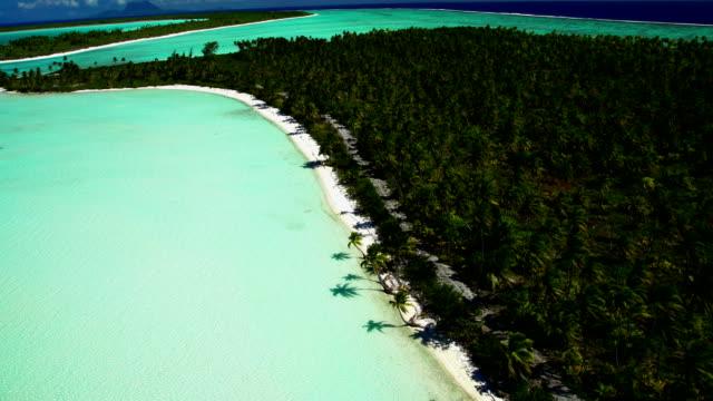 Aerial view Tupai Heart Island a coconut plantation