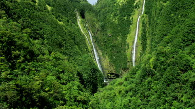 aerial view twin falls valley waterfalls maui usa - tropischer baum stock-videos und b-roll-filmmaterial