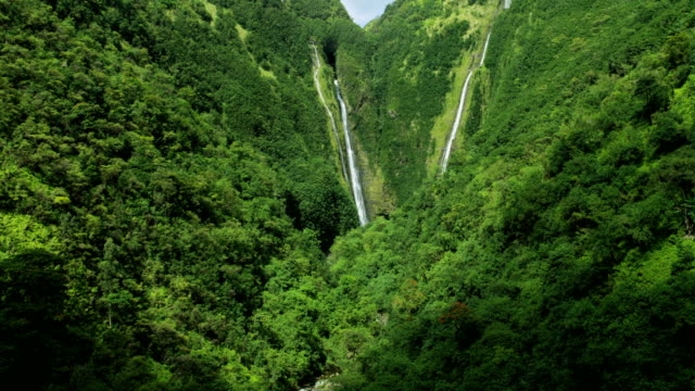 aerial view twin falls valley waterfalls maui usa - polynesian ethnicity stock videos & royalty-free footage