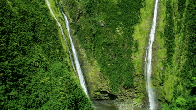 aerial view twin falls valley waterfalls maui usa - 谷点の映像素材/bロール