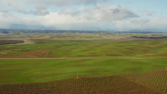 Aerial view vineyard crops Glenn County Northern California