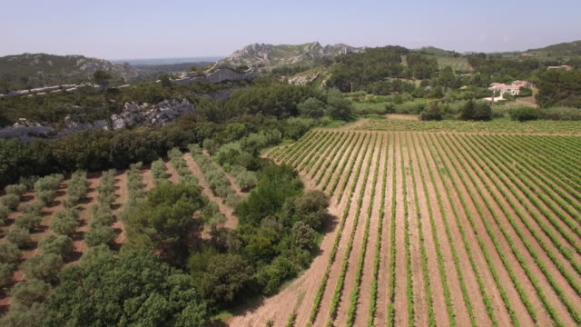 Aerial View WS Vineyards and limestone rock formation