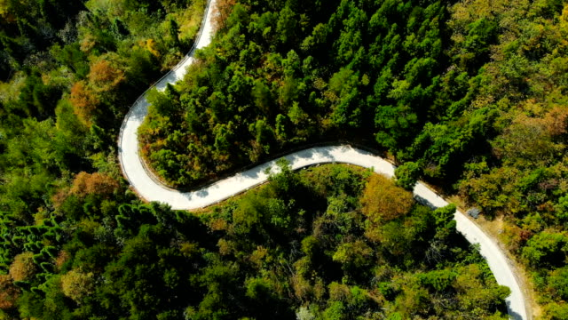 Aerial View Winding Roads