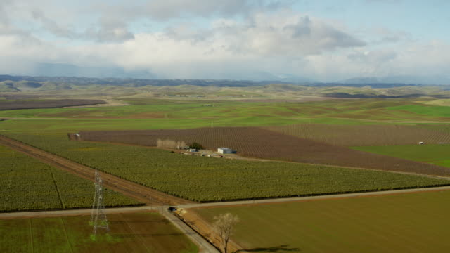 Aerial view wine vineyards Glenn County Northern California