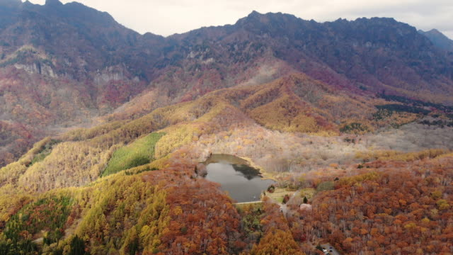 aerial view with dolly backward of autumn season at kagamiike pond, nagano, japan. - nagano prefecture stock videos and b-roll footage