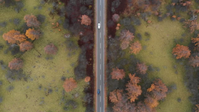aerial view with dolly forward of scenic route at senjogahara marshland in autumn season, nikko, japan. - thoroughfare stock videos & royalty-free footage