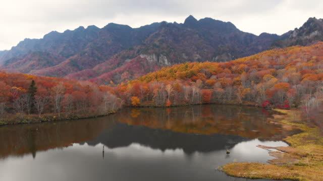 vídeos de stock, filmes e b-roll de vista aérea com dolly direito da temporada outono no lago kagamiike, nagano, japão. - nagano