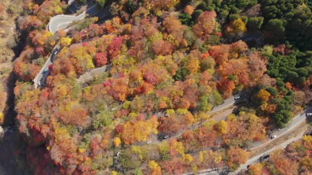 秋のシーズン、日光いろは坂曲がりくねった道を第 1 のドリー ショットで空撮。 - 秋点の映像素材/bロール