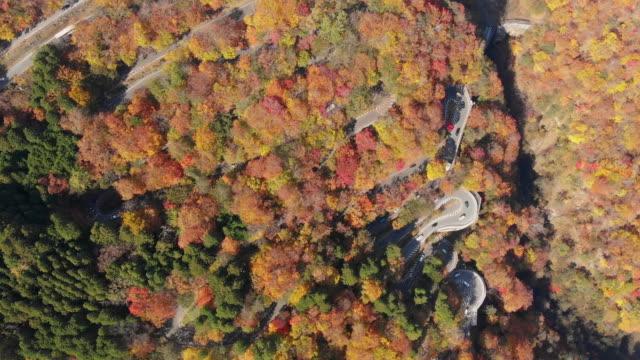 秋のシーズン、日光いろは坂曲がりくねった道を第 1 のドリー ショットで空撮。