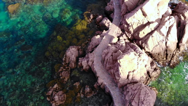 aerial view with drone flying over a nice path between rocks in the costa brava shoreline. - alge stock-videos und b-roll-filmmaterial