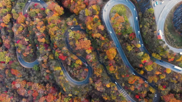 aerial view with lockdown of 2nd irohazaka winding road in autumn season, nikko, japan. - autumn leaf color stock videos and b-roll footage