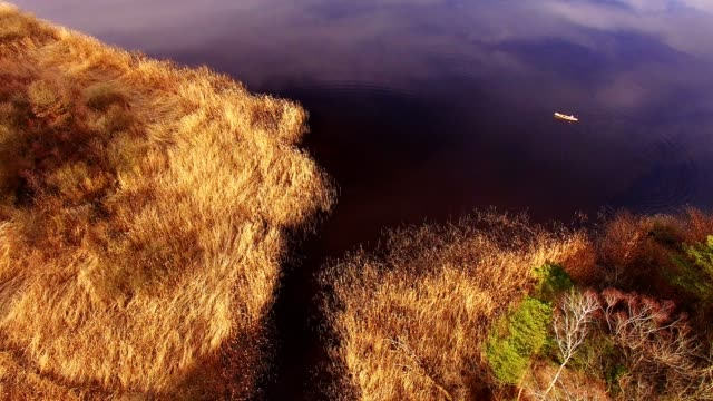 aerial view: wooden canoe on dark lake in spring - moor stock videos and b-roll footage